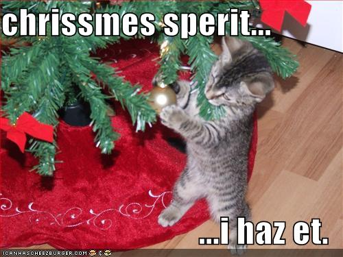 Funny-pictures-little-kitten-has-christmas-spirit