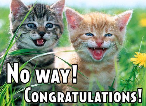 CongratsCats