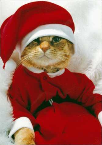 Christmas_myspace_funny_10